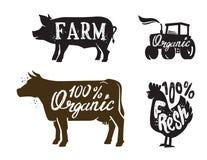 Farm Animal and text Stock Photos