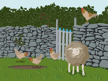 Farm Animals. Drawing of farm animals like sheep, cock and chicken on a meadow Royalty Free Stock Images