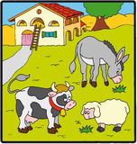 Farm animals. Donkey, cow and sheep  near the farm Stock Photography