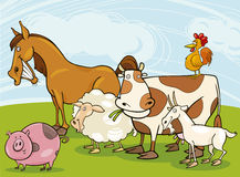 Farm animals Royalty Free Stock Images