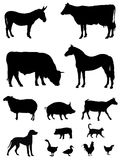 Farm animals. Vector illustration of various farm animals silhouettes Royalty Free Stock Photo