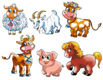 Farm animals 3 Stock Photos
