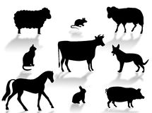 Farm animals. Silhouettes with shadows on a white background vector illustration