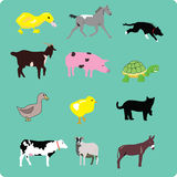 Farm animals. A duckling, a horse, a working border collie, a goat, a pig, a turtle, a duck, chicklet, a cat, a cow, a sheep, and a donkey royalty free illustration