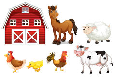 Free Farm Animals Stock Photography - 32676502