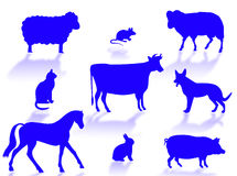 Farm animals. Silhouettes with shadows on a white background royalty free illustration