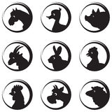 Farm Animals And Birds Vector Silhouette Icon Set Stock Images