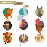 Farm animals avatars Stock Images