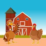 Farm animals on the background Stock Images