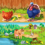 Farm Animals Banners Set Royalty Free Stock Image