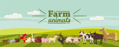 Farm animals and birds set in trendy cute style, including horse, cow, donkey, sheep, goat, pig, rabbit, duck, goose. Turkey roosterram dog cat bull and vector illustration