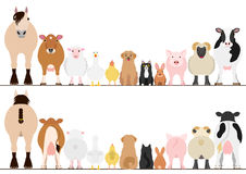 Farm animals border set, front view and rear view Stock Photography