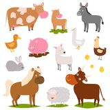 Farm animals cartoon characters family rural organic harvest farming domestic agriculture thoroughbred vector. Illustration. Mascot funny collection Royalty Free Stock Image