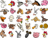 Farm animals cartoon heads big set Royalty Free Stock Images