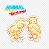 Farm animals chicken in sketch style on colorful sticker.  on transparent background. Can be used for cute coloring book for children. Include silhouette for Royalty Free Stock Photos