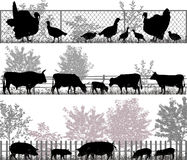 Farm animals. Collection of silhouettes of farm animals - turkeys, cows and pigs Stock Photography