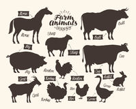 Farm animals. Collection of silhouettes  Royalty Free Stock Photo