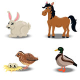 Farm animals collection. Trendy vector set of a happy horse, duck, rabbit for easter, quail. Farm animals collection Stock Photography