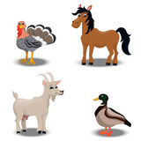 Farm animals collection. Trendy vector set of a happy horse, duck, turkey for thanksgiving Celebration Design, goat. Farm animals collection Stock Image