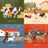 Farm Animals Design Concept Stock Images