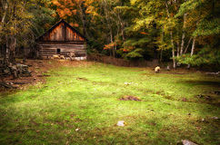 Farm Animals Eating By a Log House Stock Images