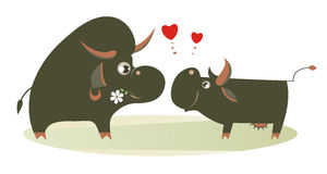 Farm animals fall in love Stock Images