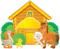 Farm animals in a farmyard. Foal, goose, chick and lamb in an animal farm Stock Photos
