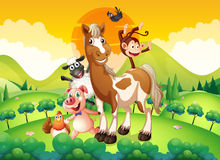 Farm animals in the field. Illustration Stock Image