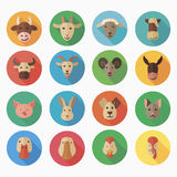 Farm animals flat icon with long shadow Stock Image