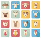Farm animals flat icons with long shadow Stock Photos