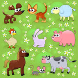 Farm animals. Stock Photography