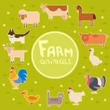 Farm animals in the green field Stock Photos