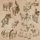Farm animals. Hand drawn vector pack. Stock Photos
