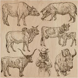 Farm animals - an hand drawn vector pack, collection. vector illustration