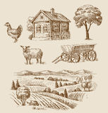Farm and animals hand drawn Royalty Free Stock Image