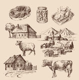 Farm and animals hand drawn Stock Photo
