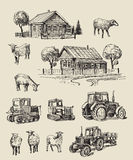 Farm and animals hand drawn Stock Photography