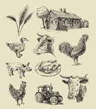 Farm and animals hand drawn Royalty Free Stock Photos