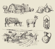 Farm and animals hand drawn Stock Images