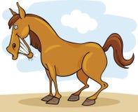 Farm animals: Horse Stock Image