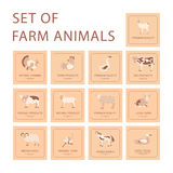 Farm animals icon set. Stock Images