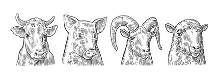Farm animals icon set. Pig, cow, sheep and goat heads Stock Photo
