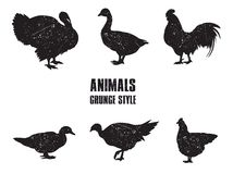 Farm animals icon Stock Images