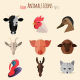 Farm Animals Icons with Flat Design Royalty Free Stock Photo