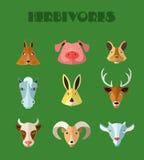 Farm animals icons. Stock Images