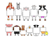 Farm animals in line with white cards Stock Photo