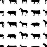 Farm animals pattern. Stock Photos