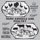 Farm animals and poultry. On background with farm Royalty Free Stock Images