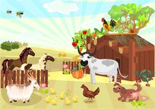 Farm animals. Rural landscape with farm animals Stock Image