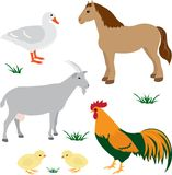 Farm animals set 2. Farm animals vector set isolated on white Stock Photo